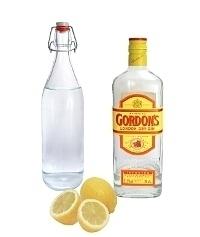 Ingredientes para Gin Sour