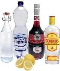 Ingredientes para Singapore Sling