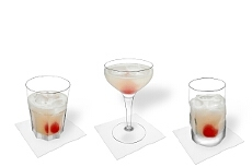 Different Gin Sour decorations