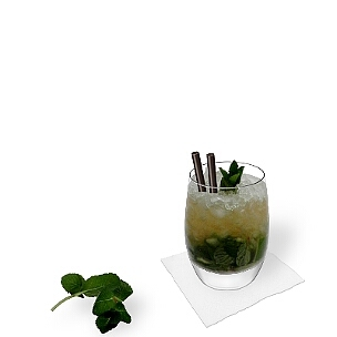 Serve Mojito in tumbler or long-drink glasses with black straws.