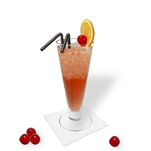 All kind of long-drink glasses are ideal for Singapore Sling.