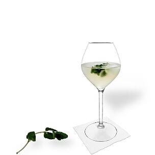 Hugo ist ein süßer Champagner-Cocktail aus Österreich mit Holunderblütensirup und Pfefferminze.
