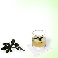 Whisky Sour im Tumblerglas mit Pfefferminz Dekoration.